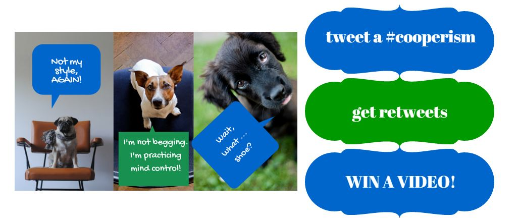 Twitter Contest Grapic